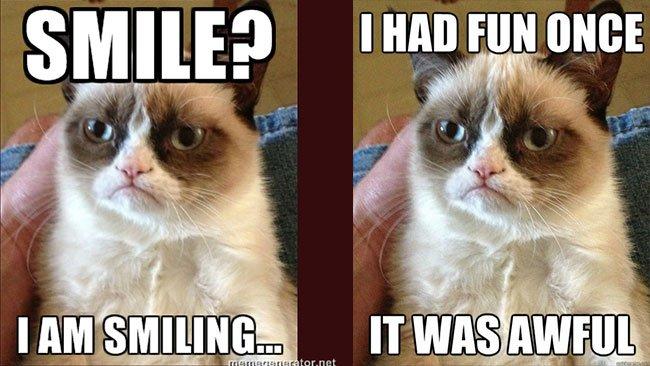 Jeux Grumpy Cat