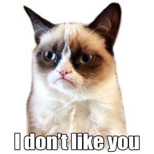 Grumpy Cat - je ne t'aime pas