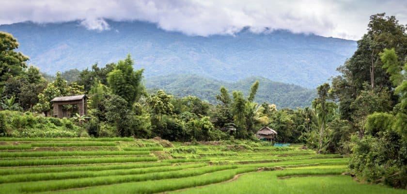 Bosser depuis un pays lointain : le concept du digital nomade